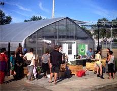 Série d'ateliers à la pergolas dans le cadre de Notre Quartier Nourricier