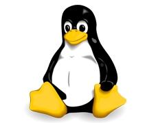 Prolonger la durée de vie de votre ordinateur : 6 à 8 Linux!