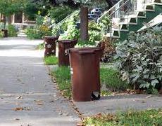 Des nouvelles de la collecte des bacs bruns dans Ste-Marie