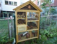Ateliers de confection d'hôtels à insectes cet été