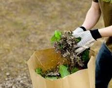 Collecte des feuilles mortes et des résidus verts