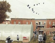 La mobilisation citoyenne pour le projet Quartier Nourricier