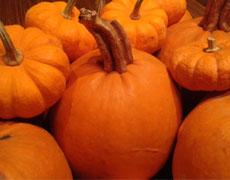Fêtons l'Halloween dans Sainte-Marie