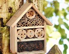 Nous sommes à la recherche de matériaux pour la construction d'hôtels à insectes