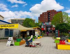 Des kiosques de la SEM/ Éco-quartier Sainte-Marie tout l'été à la Place du Marché!