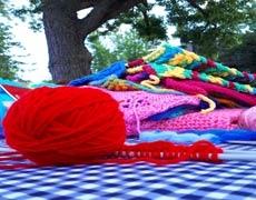 Le projet Tricoter son tissu social est de retour!