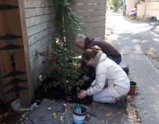 Une première phase pour la 17e ruelle verte de Sainte-Marie!