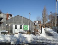 Notre Quartier Nourricier se prépare pour l'hiver