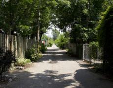 Séance d'information de l'arrondissement sur le réaménagement des ruelles, secteur du parc Sainte-Marie