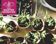 Le groupe de jardiniers et jardinières et le Festival de l'agriculture urbaine de Notre Quartier Nourricier