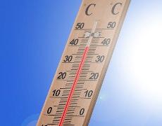 Sondage sur les changements climatiques et les vagues de chaleur